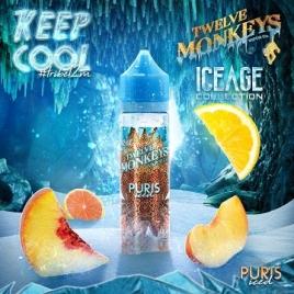 Puris Iced 50ml de Twelve Monkeys