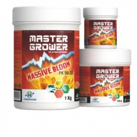 Massive Bloom 100g de Hydropassion