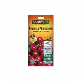 Piege à pheromone mouche de la cerise sol