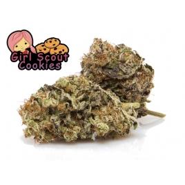 Fleurs de CBD Girl Scout Cookie