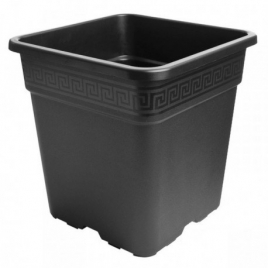 Pot carré 25L 33x33x33cm de Pasquini & Bini